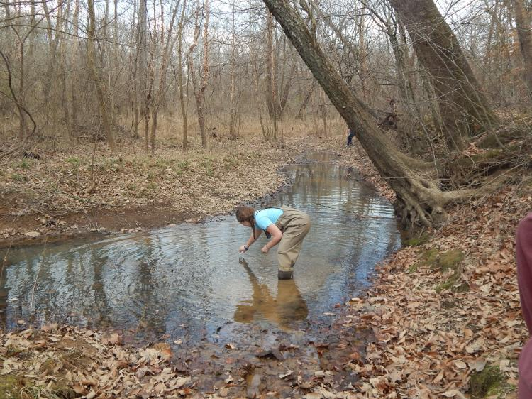 A student sampling a creek for microbes